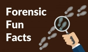 forensic fun facts