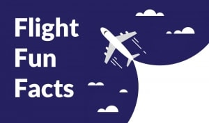 flight fun facts