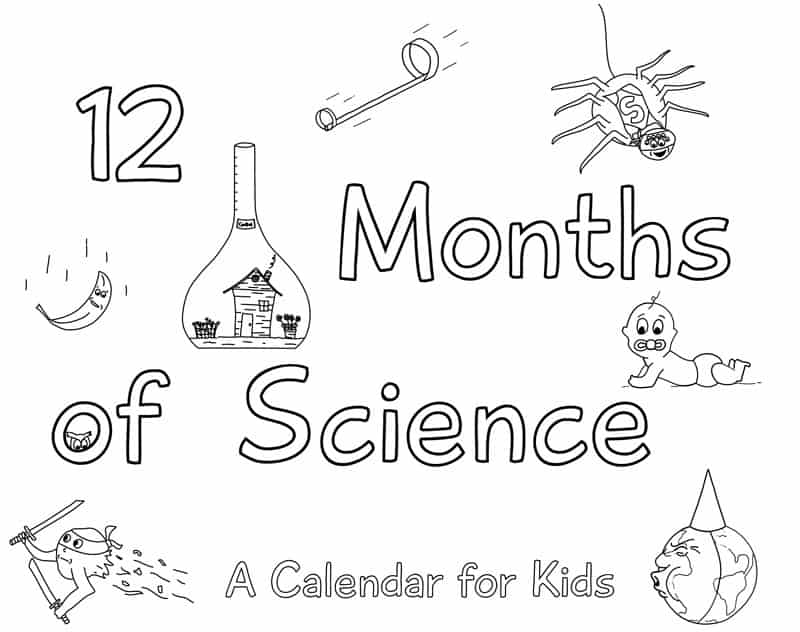 12 months science cover