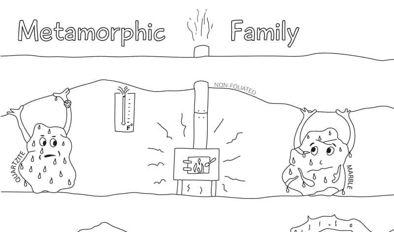 sep pic metamorphic family