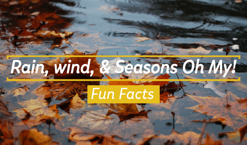 Rain, Wind, & Seasons Oh My!