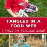 tangled in a food web game