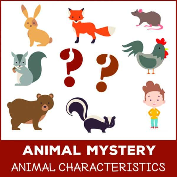 what dug garden animal mystery