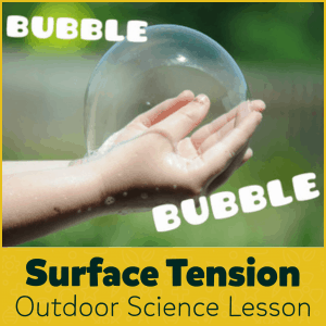 Surface Tension Outdoor Science Lesson