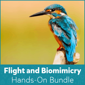 Flight and Biomimicry Hands-On Bundle
