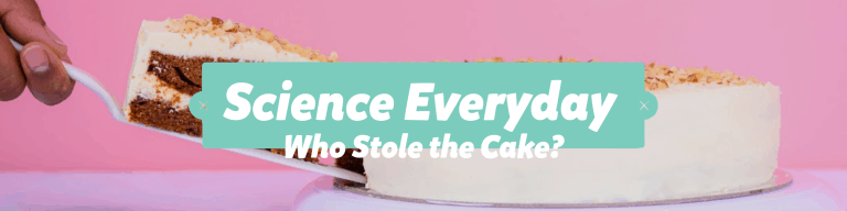 Science Everyday Who Stole the Cake?