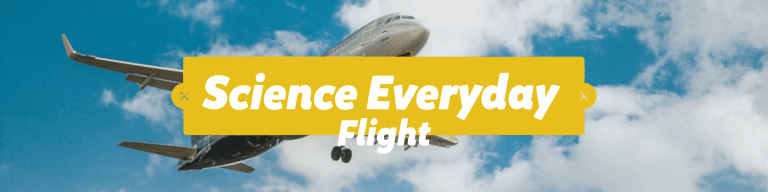 Science Everyday - Flight