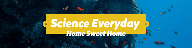Science Everyday Home Sweet Home