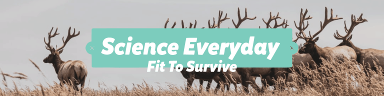 Science Everyday - Fit to Survive