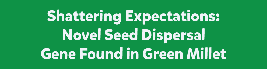 Shattering Expectations: Novel Seed Dispersal Gene Found in Green Millet