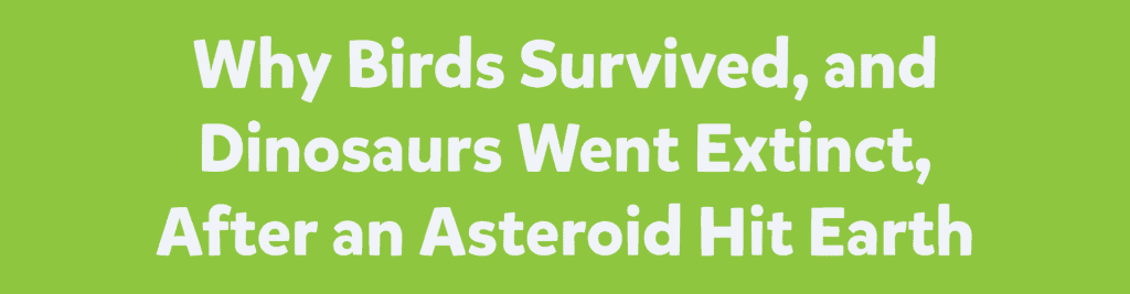 Why Birds Survived, and Dinosaurs Went Extinct, After an Asteroid Hit Earth