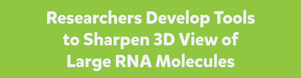 Researchers Develop Tools to Sharpen 3D View of Large RNA Molecules